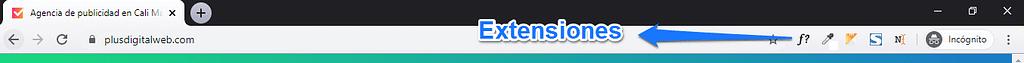 Extensiones google chrome web